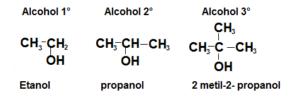Clases de Alcoholes 300x112 - Home